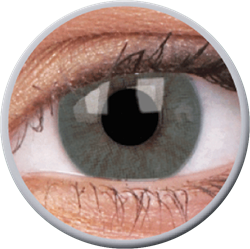 Basic Grey Contactlens