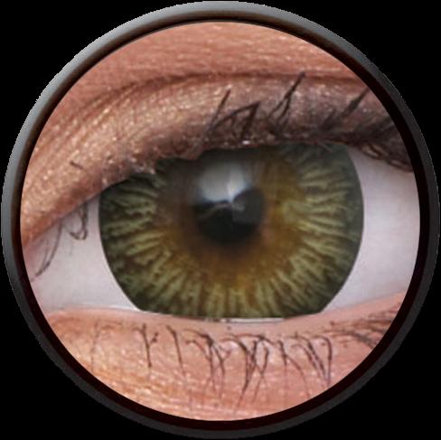 Big Eyes Enchanter Brown Contactlens
