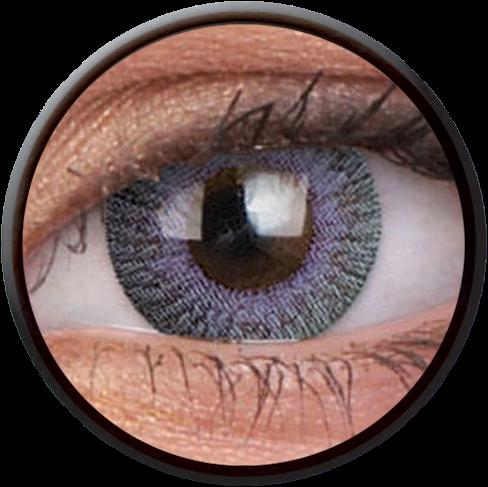 Fusion Grey Violet Contactlens