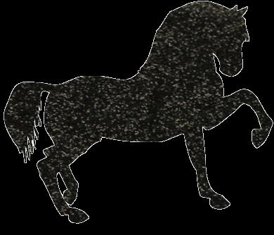 Paard Glittertattoo Sjabloon