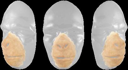 Grimas Latex Chimpansee Gezicht-2