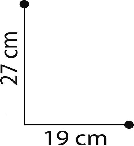 Toilettas transparant witte rand-2