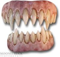 Saphira Teeth