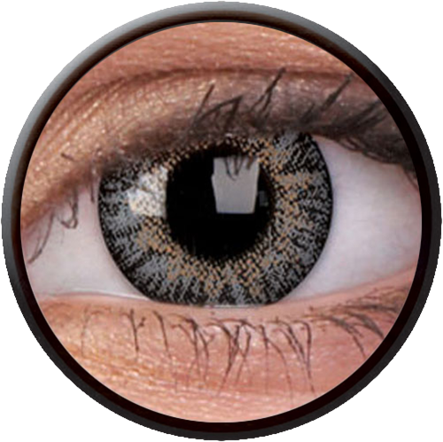 Trublend One-Day Grey Contactlens