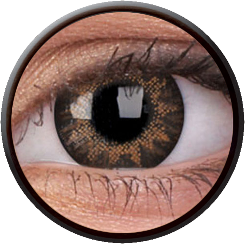 Trublend One-Day Hazel Contactlens