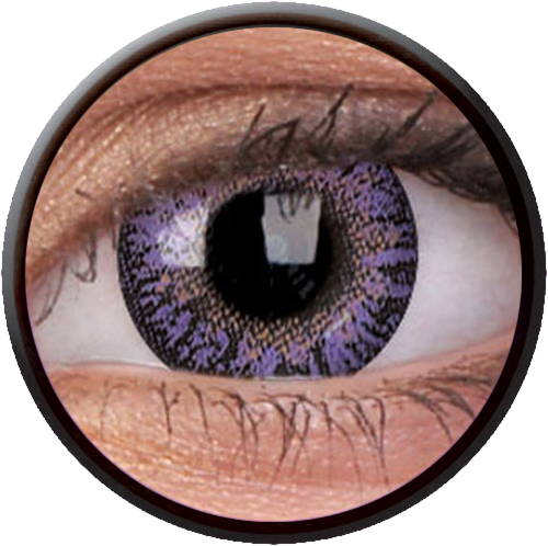 Trublend One-Day Violet Contactlens